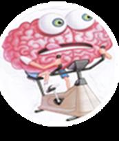 cervell rodillo